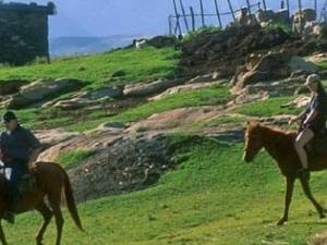 Pony Trekking Tour Photos