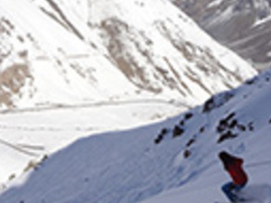 Portillo Full Day, Tour in Private