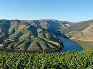 Portugal Tour : Douro Wine Region and Porto Photos