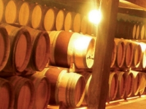 Private Wine Tour Photos