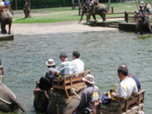 Rafting and Elephant Safari Ride Photos