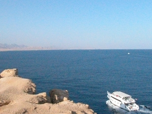 Red Sea Discovery Full Day Boat Trip Photos