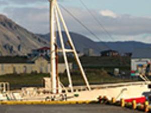 Reykjanes Peninsula and Golden Circle Arfternoon Photos