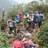 Sapa Trekking & Short Visit