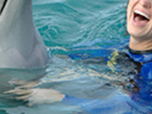 Seaquarium Dolphin Encounter Interaction Photos