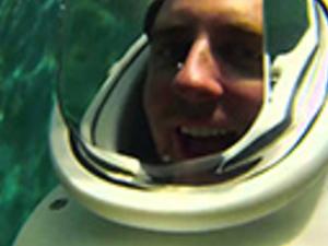 Seaquarium Sea Trek Reef Encounter Photos