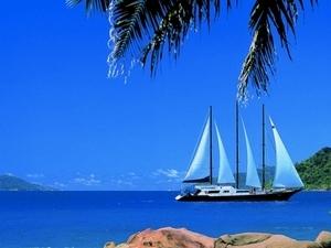 Sea Star & Sea Bird 7-Night Cruise (November - April) Photos