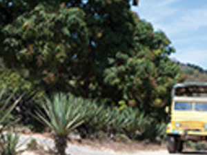 Sierra Madre Photos