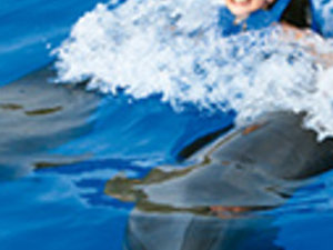 Signature Swim Photos