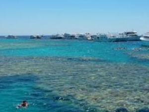 Snorkeling trip to Mahmya Island from Hurghada, Photos