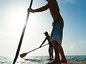 Stand Up Paddle Boarding with Leopard Sharks Photos