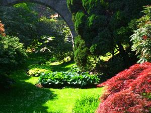 The Botanical Gardens of Villa Taranto In Verbania Pallanza Photos