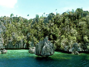 The Charm of the Easterly Paradise, Raja Ampat Photos