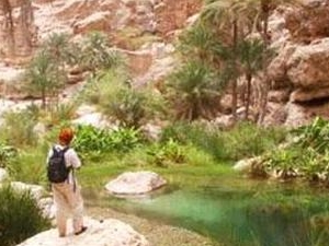 The Desert Safari - Wahiba Sands & Wadi Bani Khalid