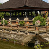 The Essence of Bali