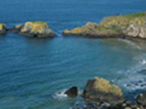 The Giant's Causeway Glens of Atrim and Wirld Atlantic Coast Photos