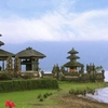 The Heart of Bali