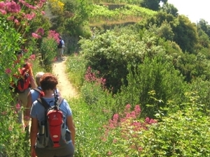 The Levanto valley:hiking, eating at 'la mamma's' and pesto course Photos