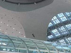 transfer from Incheon (or Gimpo) International Airport to a hotel in Seoul with a guide Photos