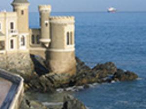 Valparaiso, Viña del Mar and Highlights Photos