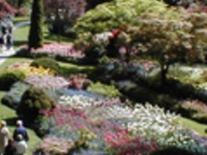 Victoria and Butchart Gardens Tour Photos