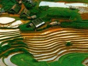Vietnam historical & Cultural exploration 18 days - 17 nights Photos