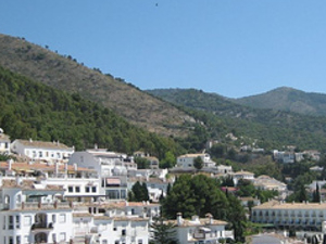 Vip Malaga Tours to Mijas Village and Butterfly Park Photos