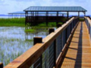 Wild Florida and Wildlife Park with Transportation Photos