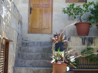 Charming Maltese house of character