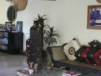 Cosy family home in Sri Lanka