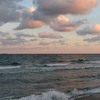 Florida Tropical Paradise