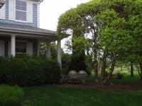 Friendly Home north of Chicago, IL