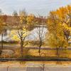 It's Central Park!!! It's Perfect!!