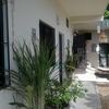 Luxury Homestay Tulum5 min.2beach
