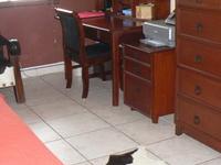 Queen Size Bedroom Suite in Panama