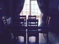 Quiet home loves socialising