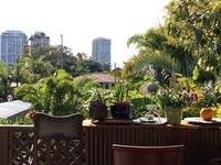 Share Paradise Garden