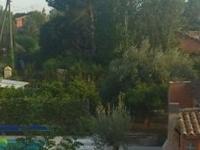 slowly life, sun, pool, eco-food.