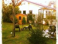 Wonderful detached villa