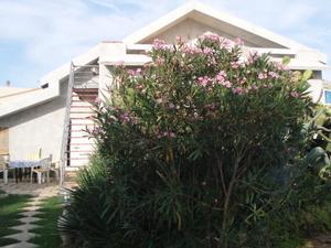 B&B La Casa Di Rose
