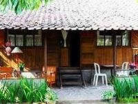 De Daunan Home & Garden