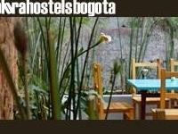 Explora Hostels