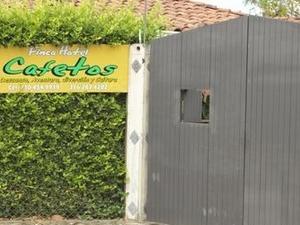 Finca Hotel Cafetos