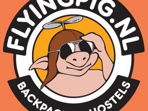 Flying Pig Beach Hostel