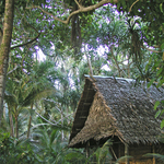 Kosrae Village Ecolodge & Dive Resort