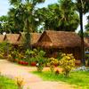 Palm Village Resort