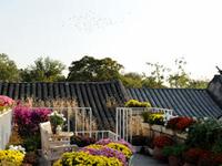 Peking Yard Hostel