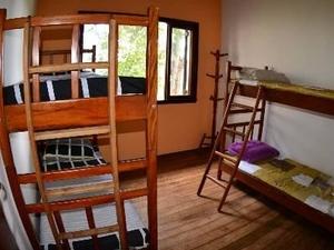 Picus Hostel
