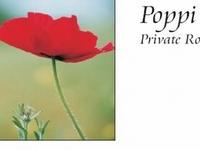 Poppi's