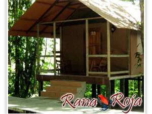 Rana Roja Lodge & Cabina